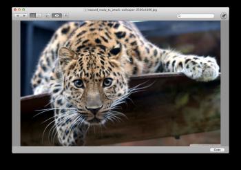 FileDesk LITE mac
