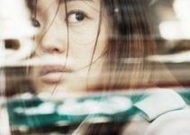 The Agent : film d'action à la John Woo comme on les aime !