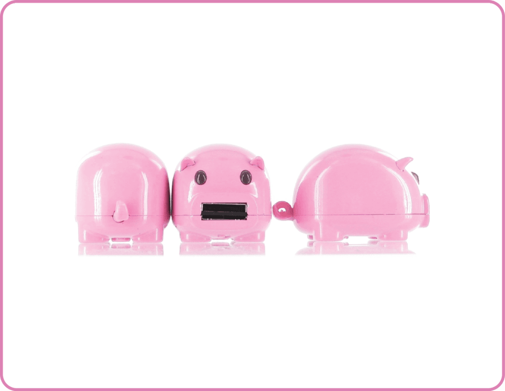 cochon usb carte sD